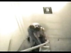Doggyfuck on the steps - security cam footage
